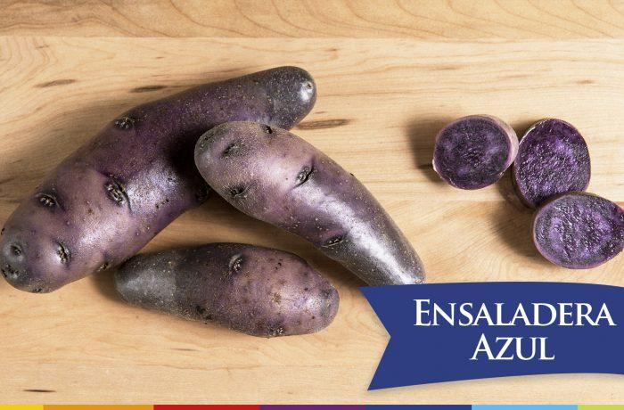 ENSALADERA AZUL